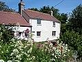 Rhewl Mostyn cottage - geograph.org.uk - 182109.jpg