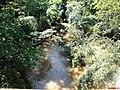 Ribeirão dos Porcos na Rodovia de acesso a cidade de Taquaritinga SP-319 pela Rodovia Washington Luiz - panoramio.jpg