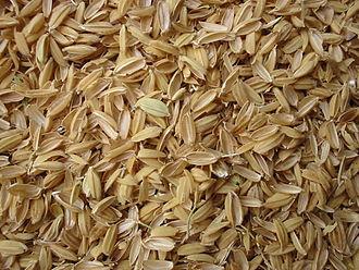 Chaff - Rice chaff