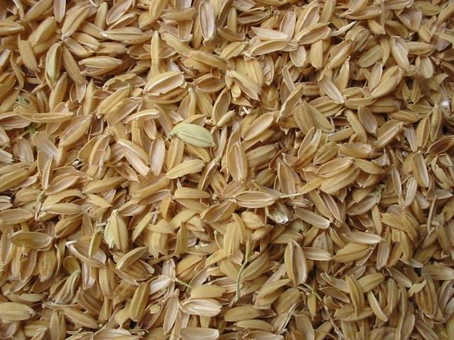 Rice chaffs