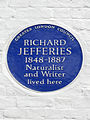 Richard JEFFERIES 1848-1887 Naturalist and Writer lived here.jpg