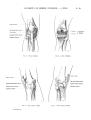 Richer - Anatomie artistique, 2 p. 37.png