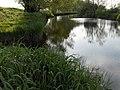 River Forth - geograph.org.uk - 184917.jpg