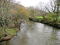 River Tamar - downstream - geograph.org.uk - 1587025.jpg