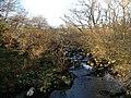 River Tavy at Standon Steps - geograph.org.uk - 300270.jpg