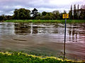 River Tees in flood at Croft.jpg