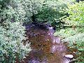 River Teign - geograph.org.uk - 1403396.jpg