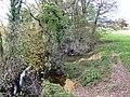 River Trothy - geograph.org.uk - 639410.jpg