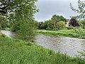 Rivière Cousin - Vault-de-Lugny (FR89) - 2021-05-17 - 3.jpg
