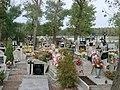 Rokitki cmentarz 10040062.jpg