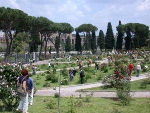 Rome Rose Garden - Rome Rose Garden