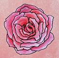 Rosenblütenfüllung Gefüllt (20-39 Petalen).jpg