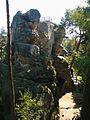 Rotstejn skalni suk od sz 2.jpg