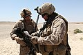 Route Recon Missions Keep Enemy Guessing DVIDS317187.jpg