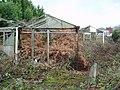 Ruined greenhouses - geograph.org.uk - 87546.jpg