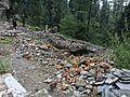 Ruins of Guljees Cottage.jpg