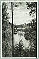 Runebergin kumpu, Takaharju, Lammasharju, Lahti Takaharjun ja Lammasharjun välissä, 1950s PK0220.jpg