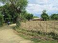 Rural Haiti.jpg