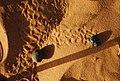 Sable-Merzouga Scarabee.JPG