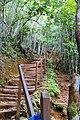 Samaná Province, Dominican Republic - panoramio (130).jpg