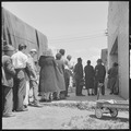 San Leandro, California. Youth on Relief. Relief clients stand in line to get their allotment of surplus commodities.... - NARA - 532127.tif