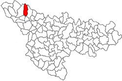 Location of Saravale in Timiș County