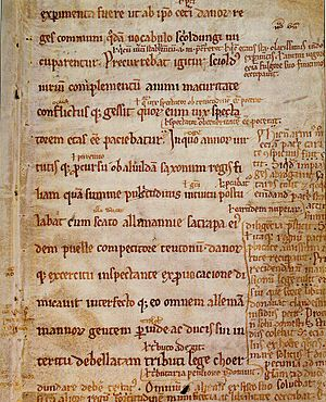 Gloss (annotation) - A gloss is a marginal notation regarding the main text in a document. Shown is a parchment page from the Royal Library of Copenhagen.