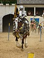 Scarborough-Faire-TX-Joust-1690.jpg