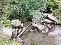 Schrittenbachgraben 3.jpg