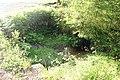 Schwarzenberský plavební kanál, křížení kanálu s Hučinou (1).jpg