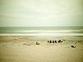 Sea (14878378231).jpg