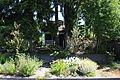 Seattle - Pigeon Point neighborhood 37.jpg