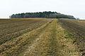 Settlement from the Bronze Age. Wierzenica.JPG