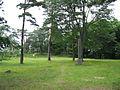 Shirakawa Castle.jpg