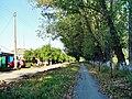 Sholokhovskiy, Rostovskaya oblast', Russia, 347022 - panoramio.jpg