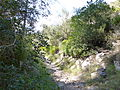 Sierra de Irta en Santa Magdalena de Pulpis 02.JPG