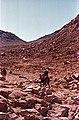 Sinai desert. - panoramio - Pastor Sam.jpg