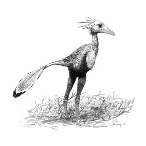 Sinornithoides - Restoration of a nesting individual