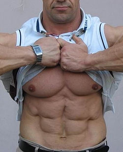 Sixpack germanuncut77 flickr.jpg