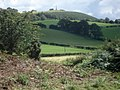 South rampart of the Ffridd Faldwyn hill fort - geograph.org.uk - 541005.jpg