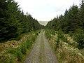Southern Upland Way - geograph.org.uk - 179466.jpg
