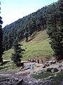 Srinagar - Pahalgam views 70.JPG
