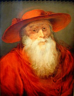St. Jerome, by Peter Paul Rubens, 1625–1630