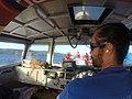 Starr-171212-8479-Heteropogon contortus-aboard Ohua boat with Captain Lopaka-En Route-Kahoolawe (39392223175).jpg