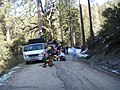 Starting a road side brushing project on the Sierra National Forest (3934727259).jpg
