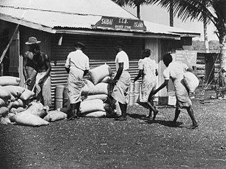Saibai Island - Saibai women help unload produce for the general store on Saibai Island, 1952. The Saibai Island I.I.B. Store is being re-stocked with produce. Several women and men are unloading sacks and barrels and taking them to the store.