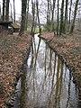 Steinhagen (Westfalen) - NSG Foddenbach Landbach.jpg