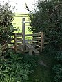 Stile near Ilton Castle Farm - geograph.org.uk - 1523037.jpg
