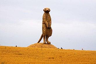 Snugburys - Image: Straw built meercat on guard (geograph 2170210)