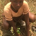 Student planting tees 06.jpg
